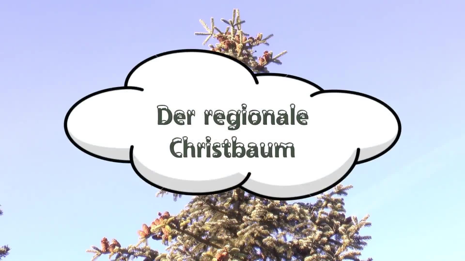 Der regionale Christbaum