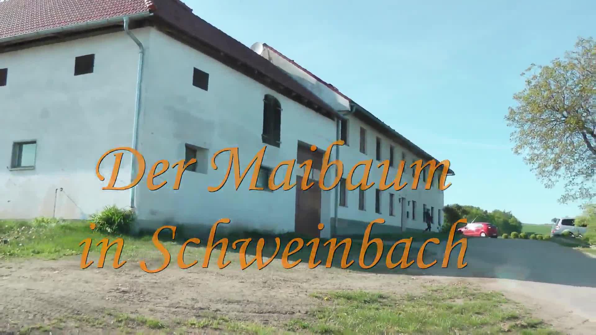 Maibaumaufstellen in Schweinbach