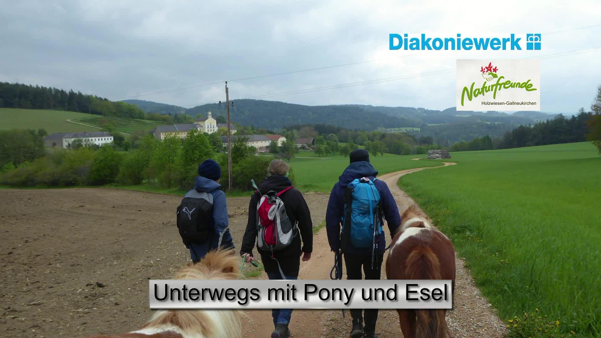 Unterwegs mit Pony und Esel